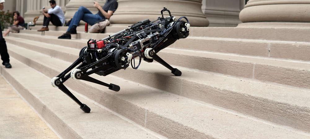 Cheetah 3 der blinde Roboter-Hund des MITs auf einem Foto.