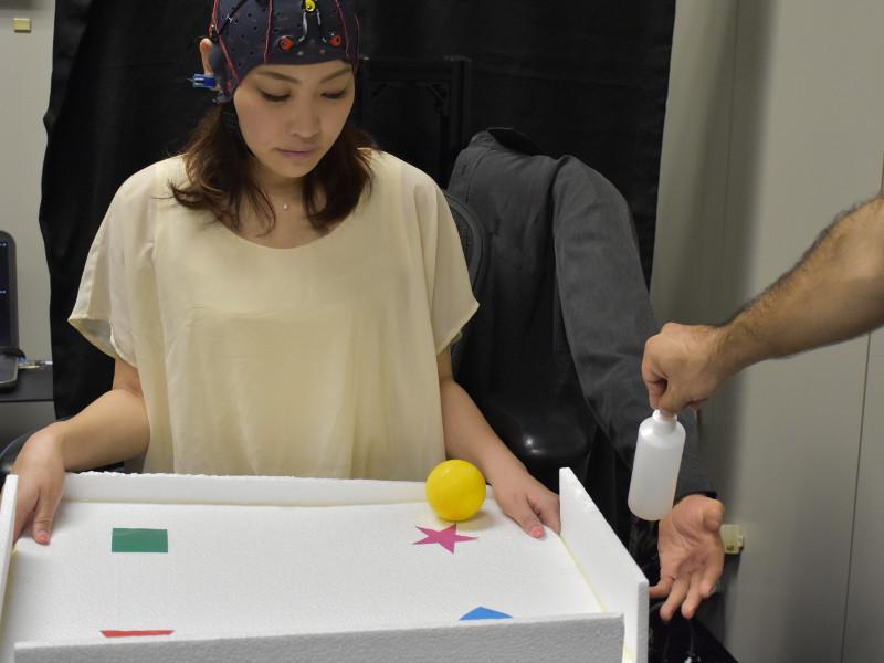 Multitasking während Gedankensteuerung eines Roboterarms.
