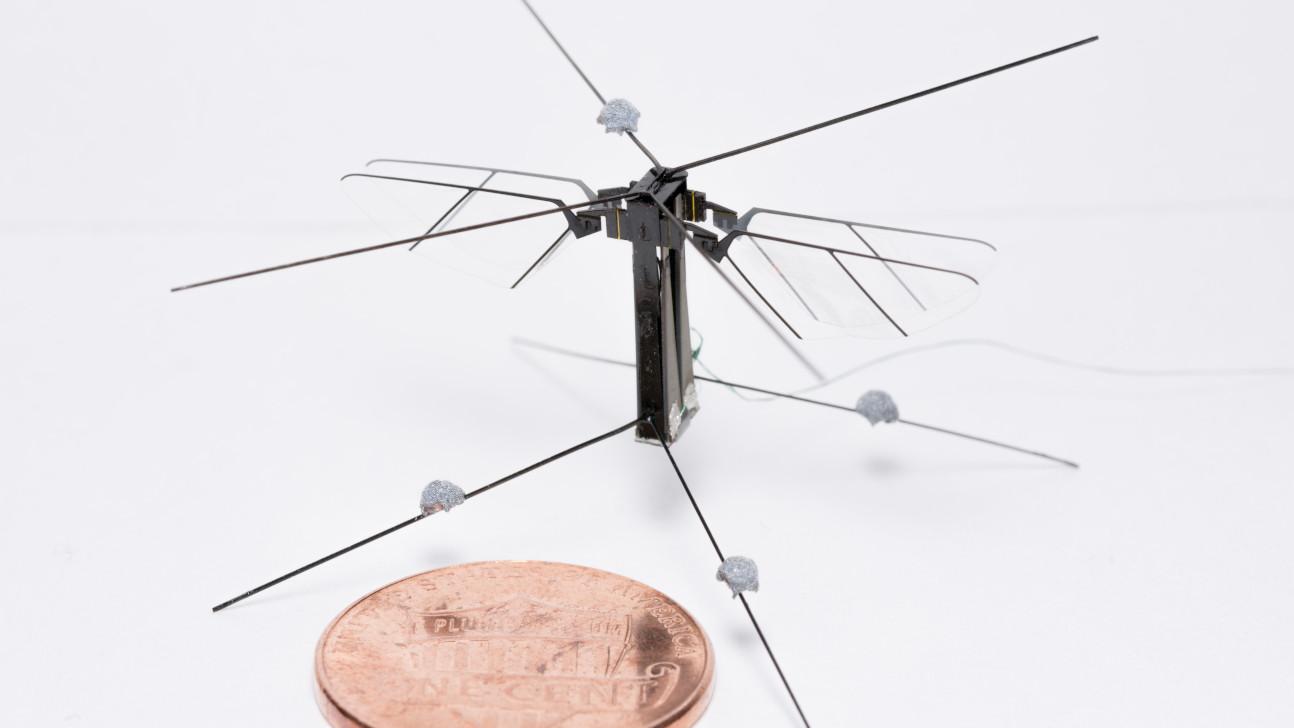 Bee+ Mini-Roboter-Insekt mit vier Flügeln im Vergleich zu einer Ein-Cent-Münze.