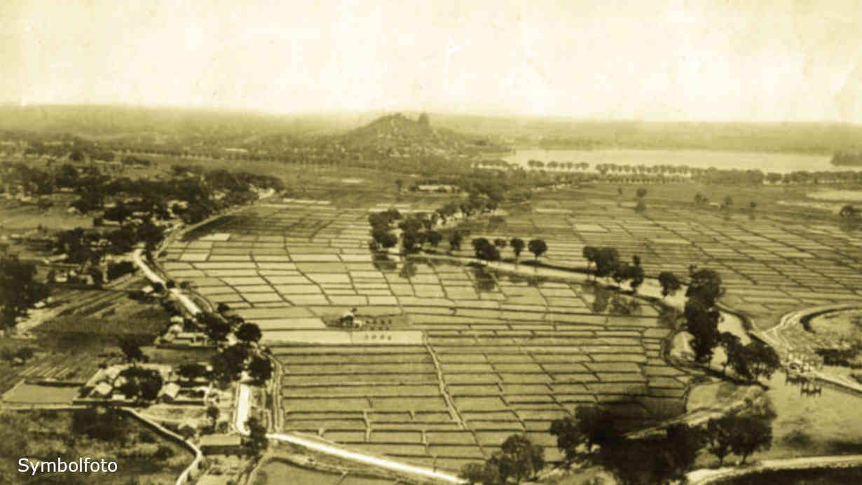 Diese Reisfelder befinden sich in China bei Peking.